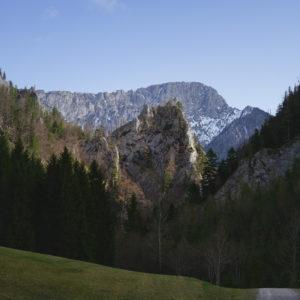 026 Frühlimg HINTERNASSW. 11.April 2018